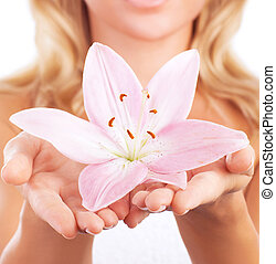 Day spa - Closeup photo of gentle pink lily flower in...