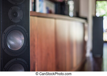 Closeup of a big speaker - Closeup image of a big black...