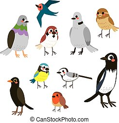 Bird Collection Set - Cute bird collection set with flat...