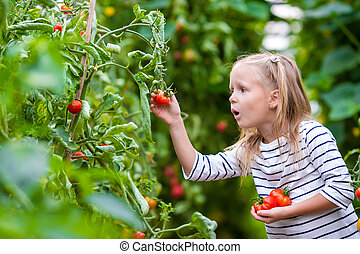 Adorable little girl collecting crop cucumbers and tomatoes...