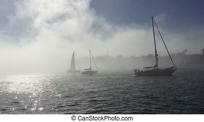 Sailboat sailing in the fog in Marina del Rey Los Angeles HD