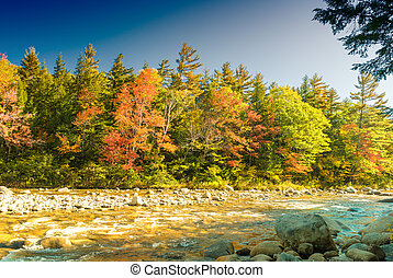 Fall foliage of New England, USA