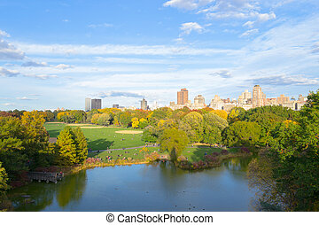 Fall in Central Park - The great lawn seen from the...