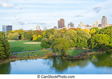 Oval lawn in Central park - The great lawn seen from the...