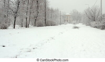 Park alley in a snowy winter day - Epoty Park alley in a...