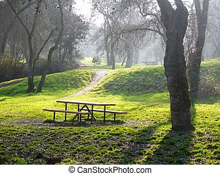 Old park - Misty day in old park Casa de Campo of Madrid...