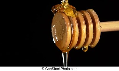 Honey dripping from a wooden honey dipper, on black, close...