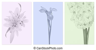 Muted color panels with flowers - A series of panels with...