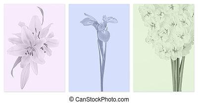 apagado, Color, paneles, con, flores,