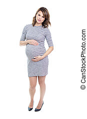 beautiful Portrait of young pregnant woman - A beautiful...