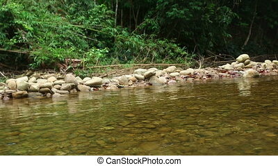 Rafting in Khao Lak - Trip of Bamboo rafting in the tropical...