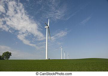 Wind Turbines on Soybean Crop in Iowa