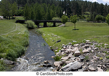 Creek in the Black Hills