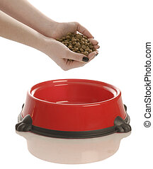 feeding the dog - person putting hand full of dog food in a...