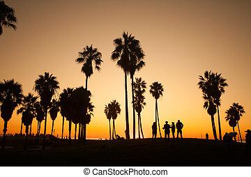 Venice Beach. Sunset. Summer concept