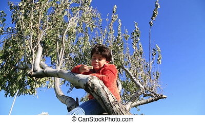 Happy young boy in a tree eating wafer
