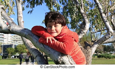 Happy young boy sitting on the tree