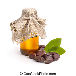 Jojoba (Simmondsia chinensis) leaves, seeds with oil....