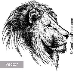 engrave lion illustration - engrave isolated lion vector...