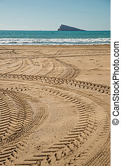 Tyre tracks - Sandy beach crisscrossed by offroader tyre...