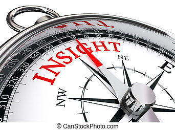 insight red word concept compass isolated on white...