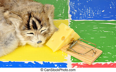 Cat And Mouse Trap - Cat sleeping next to a mouse trap...