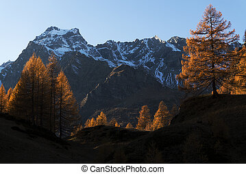 Autumn colors at the Devero Alp in a beautiful sunset with...