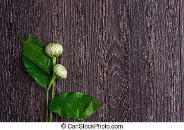 Tropical jasmine flower
