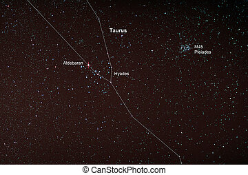 Starfield with Taurus and Pleiades - Astro Photo: Starfield...