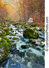 Mountain stream in autumn, Julian Alps, Italy - A view of...