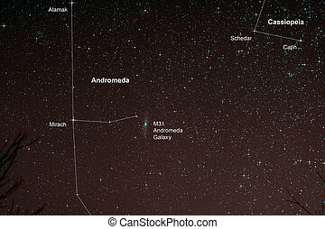 Starfield with Andromeda Galaxy - Astro Photo: Starfield...