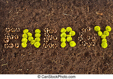 Save Energy - Environmental Energy written in flowers and...