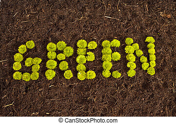 Go Green - Environmental Green written in flowers on soil.