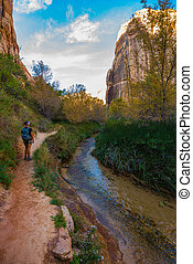 Hiker, Calf Creek Canyon Trail - Calf Creek Utah A woman...