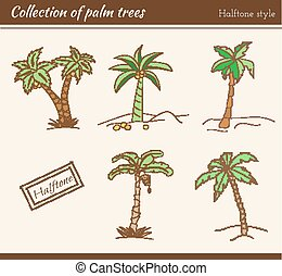 Palm Tree Collection