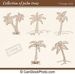 Palm Tree Collection - Collection of palm trees in vintage...