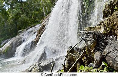 El Nicho waterfall in Scambray mountains Cienfuegos...