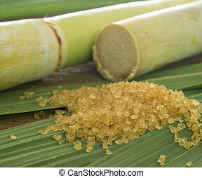 sugar cane - closeup granulated brown sugar on sugarcane...