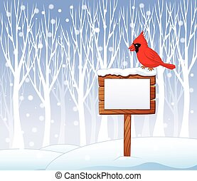 Cartoon cardinal bird on the blank - Vector illustration of...