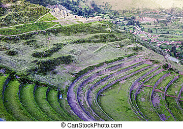 Pisac ruins - Terraces in Pisac ruins in Sacred Valley,...