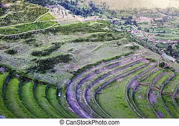 Pisac ruins - Terraces in Pisac ruins in Sacred Valley,...