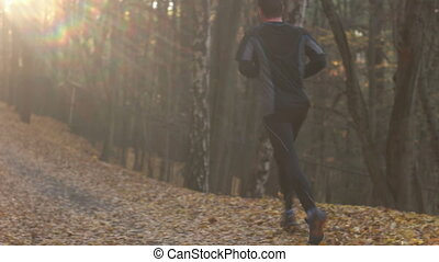 Fall Season in the Forest - A young man excercising, running...