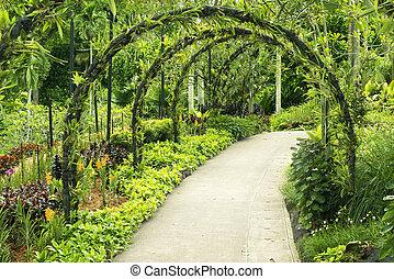 Botanical garden - green arcs made of tropical plants above...