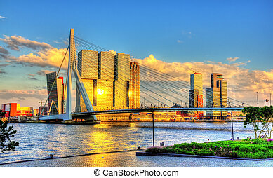 Erasmus Bridge in Rotterdam - Netherlands