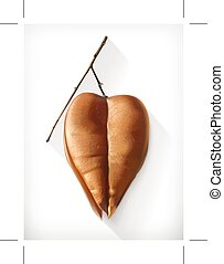 Dry physalis icon - Dry physalis, autumn icon