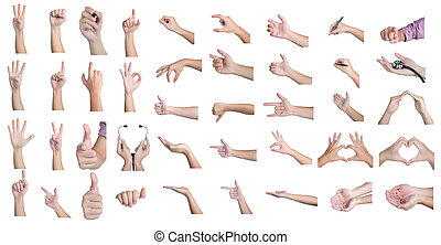 set hand showing different signs 41 action isolated - set...