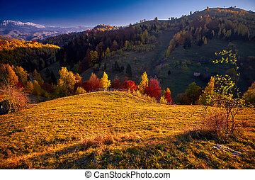 Autumn Landscape - Autumn in the countryside with colorful...