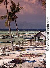 ASIA INDONESIA BALI NUSA LEMBONGAN LANDSCAPE COAST - the...