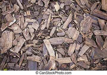 Wood chips - Wood chips from the tree lying on the ground