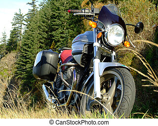 portrait of a motorcyle - low angle view of a classic styled...